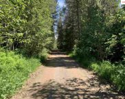 NNA  Pup Paw Trail, Priest River image