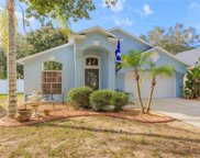 709 Somerstone Drive, Valrico image