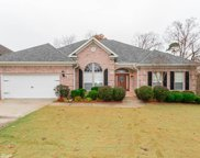 6 Warblers Cove, Little Rock image