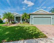 11036 Holly Cone Drive, Riverview image