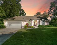14152 Coppertree Court, Hudson image