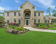 29519 Imperial Creek Drive, Tomball image