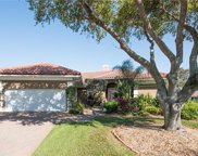 960 Water Lily Court Ne, St Petersburg image