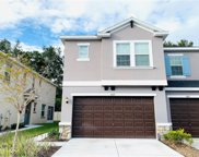 6617 Citrus Creek Lane, Tampa image