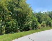 152 Preserve  Court, Hendersonville image