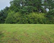 Cottonwood, Chattanooga image