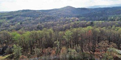 317 Laurel Valley Way, Travelers Rest