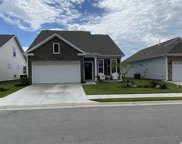 1195 Pyxie Moss Dr., Little River image