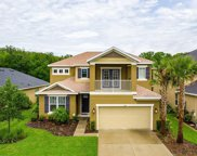 1841 Virginia Willow Drive, Wesley Chapel image