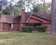 3209 Earl Dr, Tallahassee image