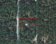 TBD Sw 198th Avenue, Dunnellon image