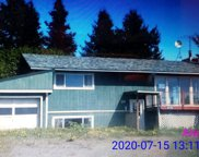 41770 Brown Drive, Homer image