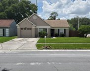 4601 Cabbage Palm Drive, Valrico image