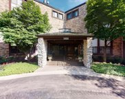1400 North Yarmouth Place Unit 111, Mount Prospect image