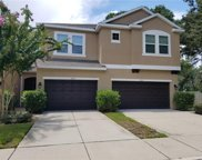 5603 Tranquil Pond Place, Riverview image