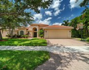 1405 King Sago Ct, Naples image