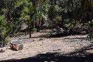 420  Sand Ridge Ct., Trinity Pines image