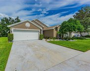 1417 Lake Shore Ranch Drive, Seffner image