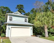 38 Catawba Ct., Pawleys Island image