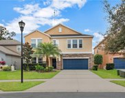 14268 Blue Dasher Drive, Riverview image