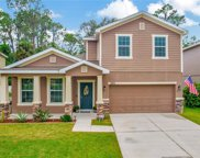12211 Swaying Moss Circle, Riverview image