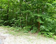 Lot 1235 Rustic Dr, Baneberry image
