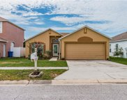 4320 Horseshoe Pick Lane, Valrico image