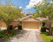 8919 Iron Oak Avenue, Tampa image
