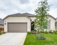 1558 Founders Park, New Braunfels image