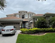 10119 Sw Deercliff Drive, Tampa image