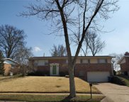 10138 Glenfield  Terr, St Louis image