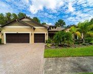 12917 Cypress Estates Place, Tampa image