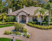 1537 Sunray Drive, Palm Harbor image