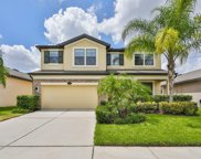 11712 Albatross Lane, Riverview image
