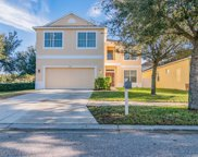 7349 Forest Mere Drive, Riverview image