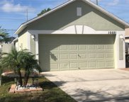 10521 Opus Drive, Riverview image