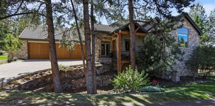 5282 Red Pass Way, Castle Rock