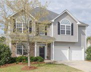 2224 Porcher  Court, Fort Mill image