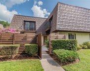 15440 E Pond Woods Drive, Tampa image
