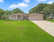 486 Druid Road, Spring Hill image