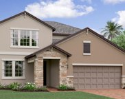 8779 Flourish Drive, Land O' Lakes image