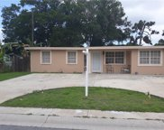 3905 Spence Avenue, Tampa image