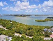 1181 Blue Hill Creek Dr, Marco Island image