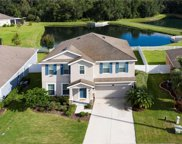 2806 Holly Bluff Court, Plant City image