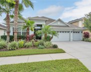 3503 Diamond Falls Circle, Land O' Lakes image