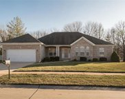 274 Wildhorse Springs  Court, Chesterfield image