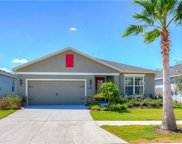 11128 Spring Point Circle, Riverview image