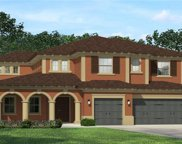18012 Woodland View Drive, Lutz image