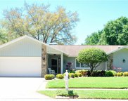 561 Hadley Drive, Palm Harbor image