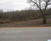 Lot # 3 Highway 411, Leesburg image